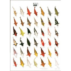 Poster Carpas Japonesas KOI 2
