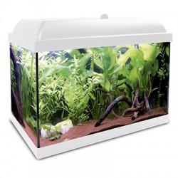 Acuario Agua Dulce Kit HYDRA LED 25L
