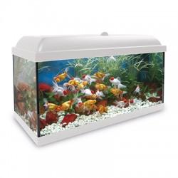 Acuario Agua Dulce Kit HYDRA LED 150L