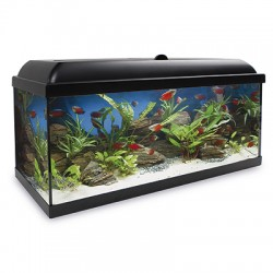 Acuario Agua Dulce Kit HYDRA LED 300L