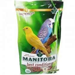 Mxt. de la Salud Best Condition (Manitoba)