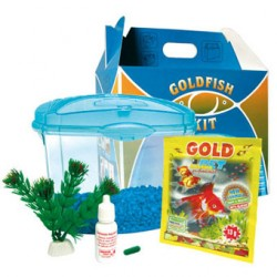 KIT GOLDFISH
