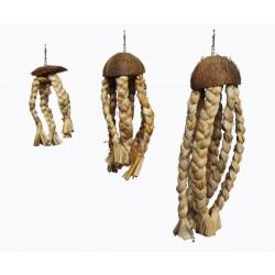 Jellyfish - Medusa