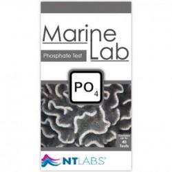 Test de análisis de fosfatos MarineLab de NTLABS