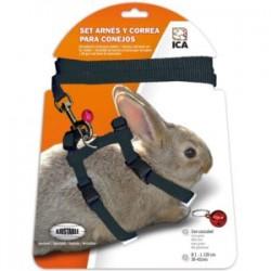 Arnés y correa para conejos