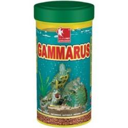 GAMMARUS