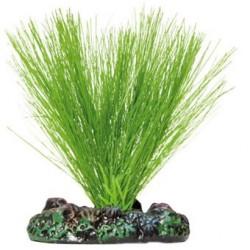 Planta de seda Miriophyllum