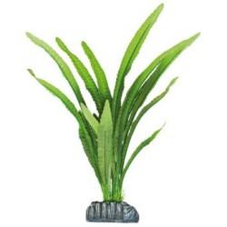 Planta de seda Echinodorus