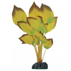 Planta de Seda Anubias Amarilla