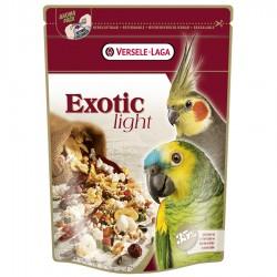EXOTIC LIGHT