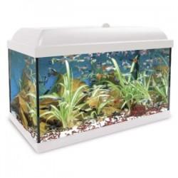 Acuario Agua Dulce Kit HYDRA LED 45L