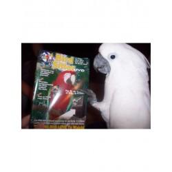 Parrot SUPER NANNY - DVD para loros
