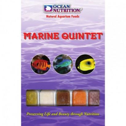 Marine Quintet congelado