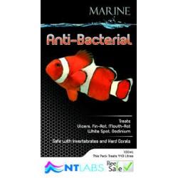 Anti-Bacterial Marine
